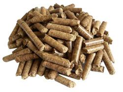 Economics Producing Fuel Pellets Biomass And Bamboo