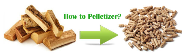 Pelletizer extruder process your biomass material into