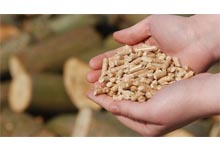 learn about quality pellets